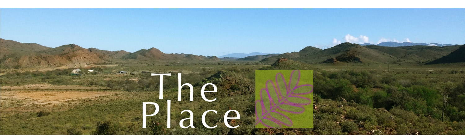 The Place Self Catering Guest Farm